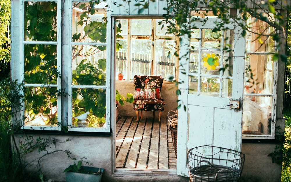 Backyard shed painted blue and filled plants and refurbished furniture